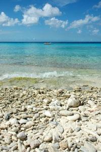 חוף הים. צילום: sxc.hu
